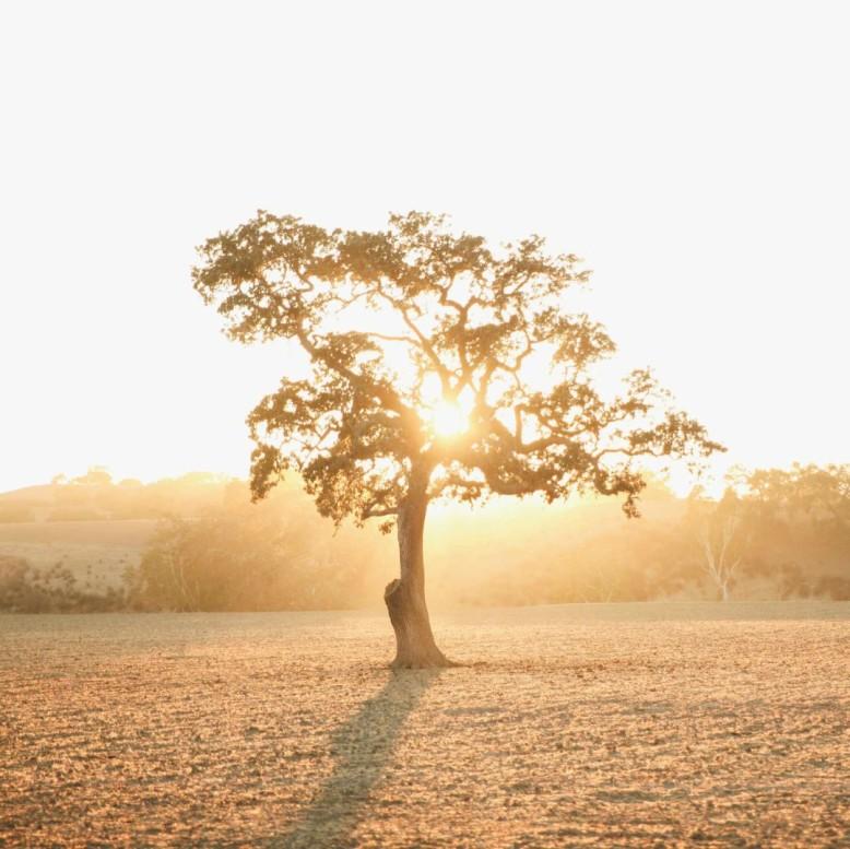 wonderfullymade-blog-images-19-1080x1079